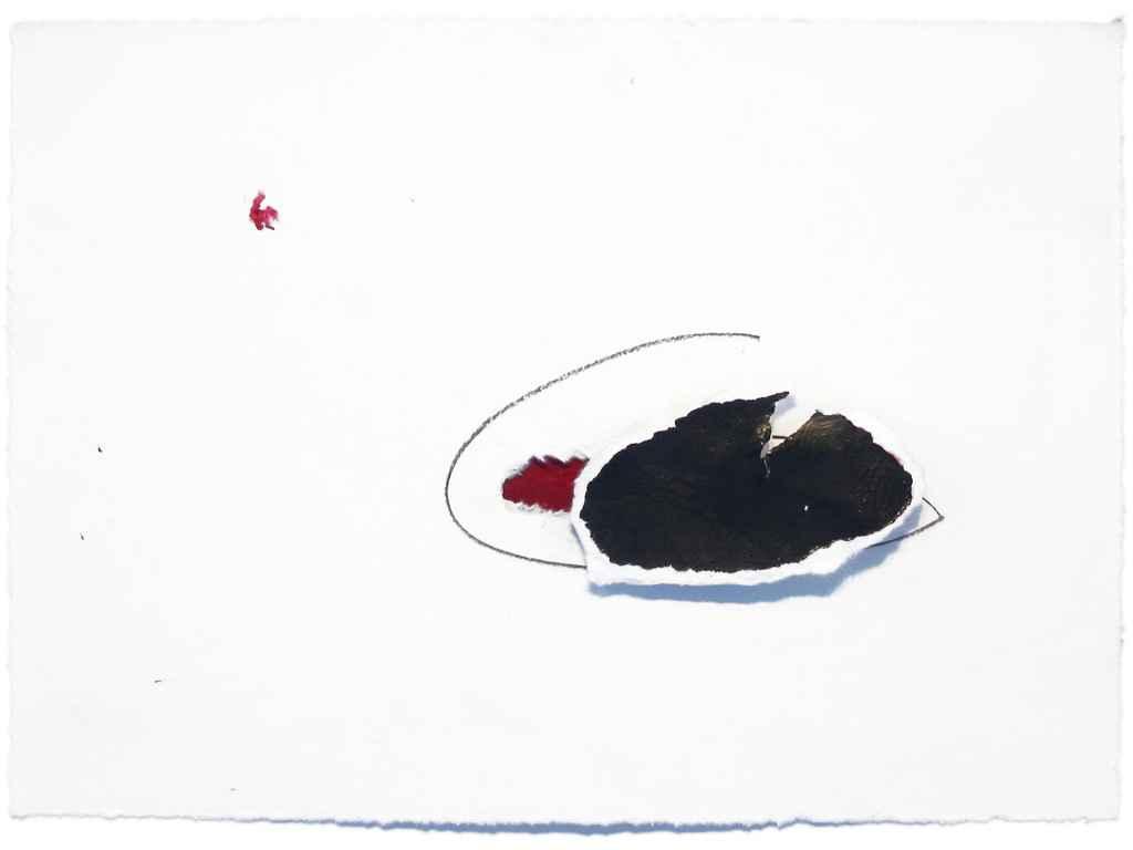 Dana Widawski · Linie & Fragment · 2004